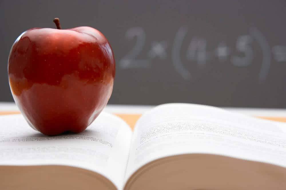 Teacher Moments – Lucy Shrout & Carol Robertson